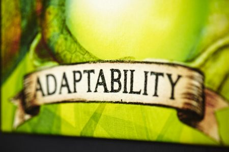 A Most Sought After Skill To Ponder For 2019: Radio segment with 2SM on 'ADAPTABILITY'